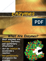enzyme ppt.ppt