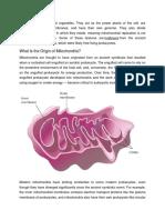 Mitochondria Are Unusual Organelles
