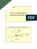 4 Sintesis Proteinas Plasmaticas