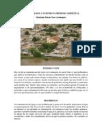 Contaminacion a Nuestro Patrimonio Ambiental.