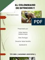 Animal Colombiano en via de Extincion