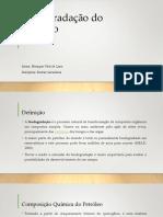 Biodegradação do Petróleo.pptx