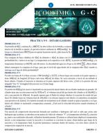 PRACTICA N°1 (GASES)-1