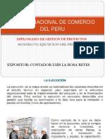 EJECUCION DEL PROYECTO.pptx