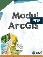 Modul_ArcGIS_SGT_Geomedia.pdf