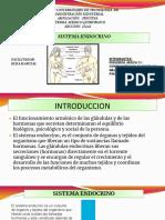 ANA ENDOCRINO MEDICO.pdf
