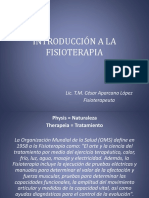 introduccinalafisioterapia-140730120949-phpapp02.pdf