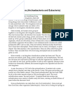 kingdom monera reading.pdf