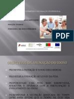 ufcd3541animaodeidososnodomicilioeeminstituies.pptx