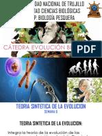 Semana 6 Teoria Sintetica de La Evolucion