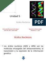 Unidad 5_Ácidos Nucleicos