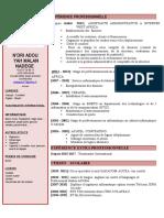 CV NADEGE 2017.doc