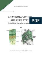 Aula Prática -Anatomia Vegetal -Aluno