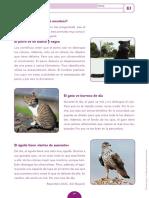 5º LENGUA - EVALUACIÓN INICIAL.pdf