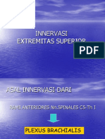 Innervasi ext sup.ppt