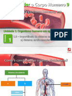 8_cardiovascular.pptx