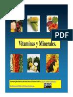 33. Vitaminas y minerales.pdf