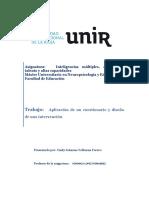 Cuestionario y programa de intervencion inteligencias multiples