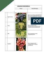 vine.pdf