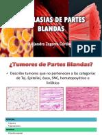 Neoplasias de Partes Blandas