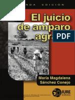 Amparo-Agrario-2a.-ed..pdf