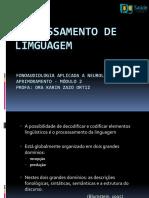 Processamento de Linguagem - Aula