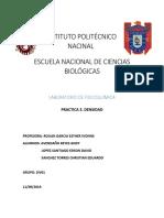 Instituto Politécnico Nacinal 13