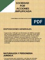 SOCIEDAD POR ACCIONES SIMPLIFICADA.pdf