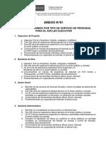 ANEXO 01 - REQUISITOS MÍNIMOS POR TIPO DE SERVICIOS.pdf