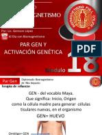 18-Par Gen-Activacion genetica.pdf
