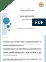 act1_ConceptosBasicos.pptx
