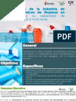 Caracterizacion de la industria de productos quimicos de limpieza .pdf
