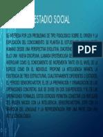 Estadio social