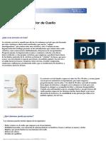 Dolor Cervical-Artrosis Cervical