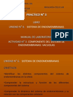 práctico 3