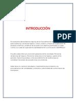 Procedimientos_De_Auditoria_Para_Gastos.docx
