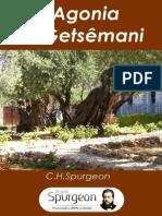 a-agonia-no-getsemani.pdf