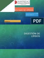 Metabolismo de Lipidos (1).Pptx · Versión 1