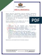 REQUISITOS_REGISTRO_PROFESIONAL2405 (1).pdf