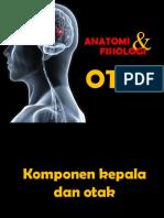 01.Anatomi Fisiologi Ssp