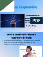 biologia-31.pptx