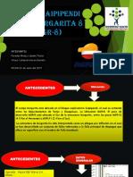 proyecto_MGR-8[1]