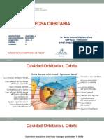 PONENCIA FOSA ORBITARIA