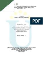 Unidad 1- Tarea 1 - Trabajo colaborativo - Desarrollar actividad sobre generalidades de morfología..docx