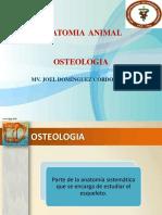 02.- OSTEOLOGIA.pptx