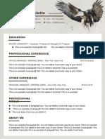 Eagle Resume-WPS Office Wewe