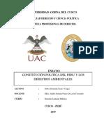 ENSAYO PARA EL PRIMER APORTE LABORAL PUBLICO.docx