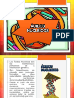 Biologia Acidosnucleicos 140806072446 Phpapp02