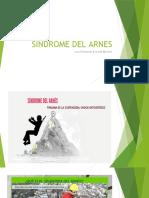 Sindrome Del Arnes Fer