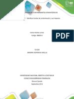 IDENTIFICAR FUENTES DE CONTAMINACIÓN Y SUS IMPACTOS